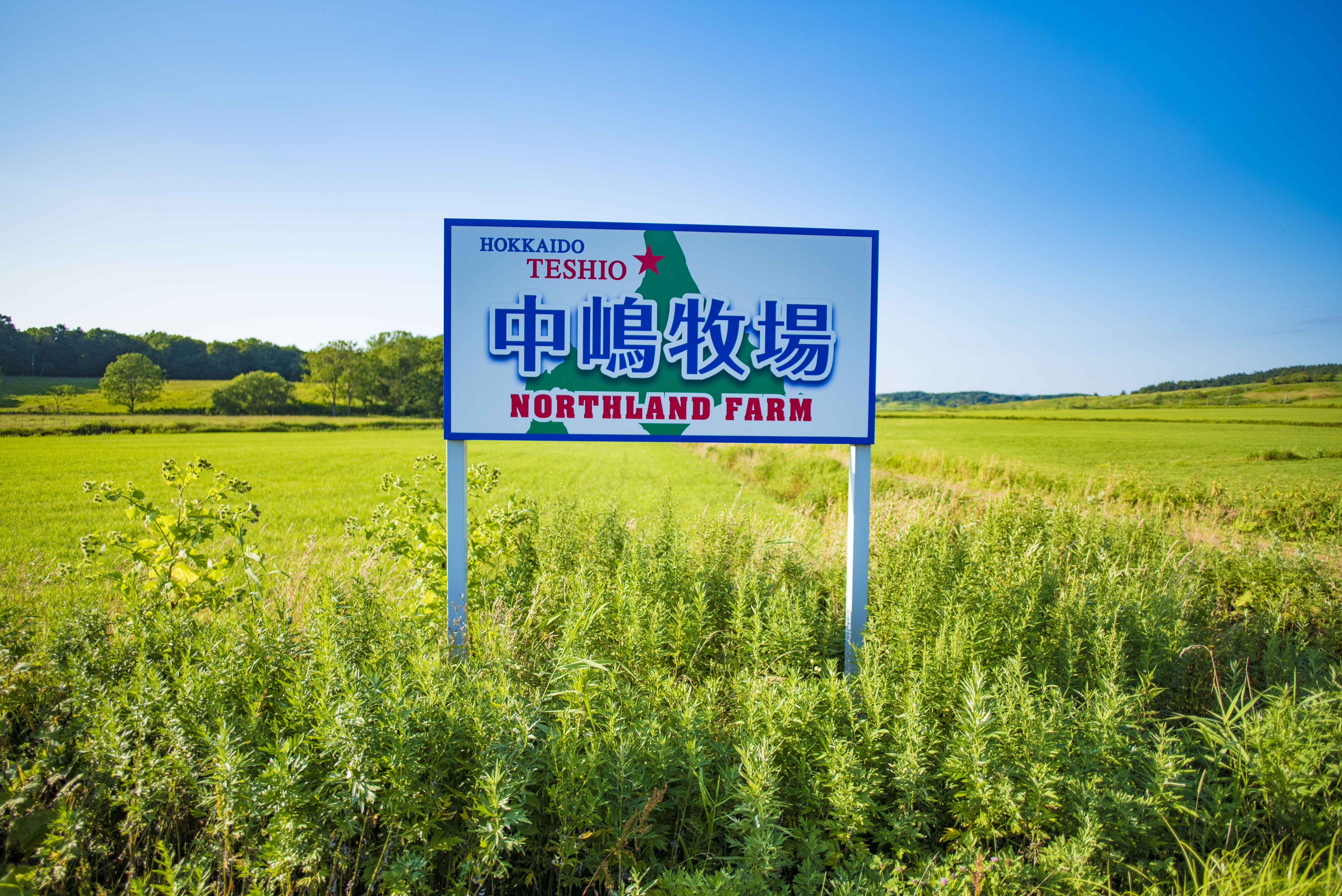 台湾人とお友達に|日本一周農家旅 中嶋牧場 in 北海道天塩
