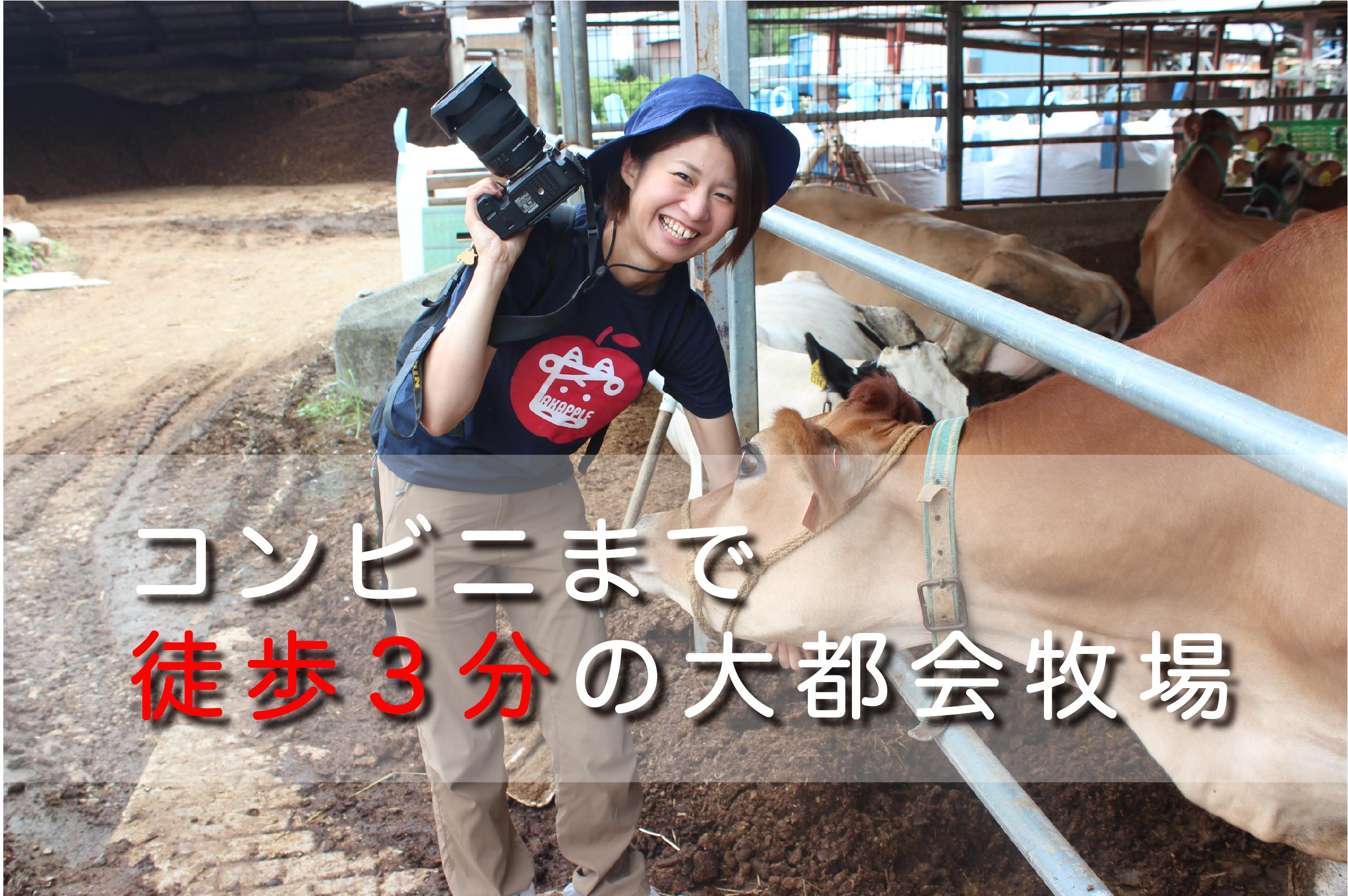 大都会!!コンビニまで徒歩3分!|日本一周農家旅 片倉牧場 in 神奈川県平塚