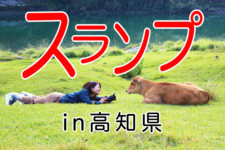 スランプに陥る。|日本一周農家旅 吉野川 in 高知県本山