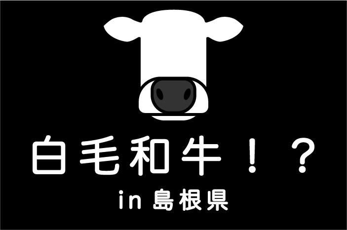 白毛和牛を発見!?|日本一周農家旅 島根県畜産技術センター in 島根県雲南