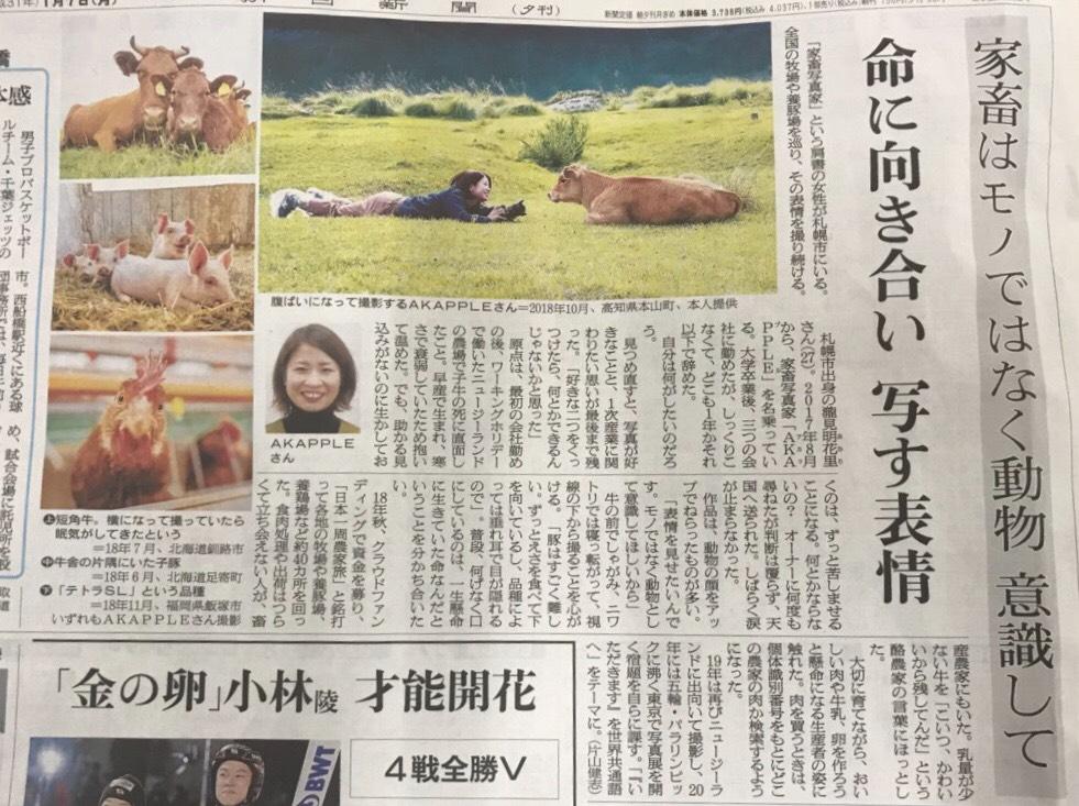 朝日新聞(家畜写真家)