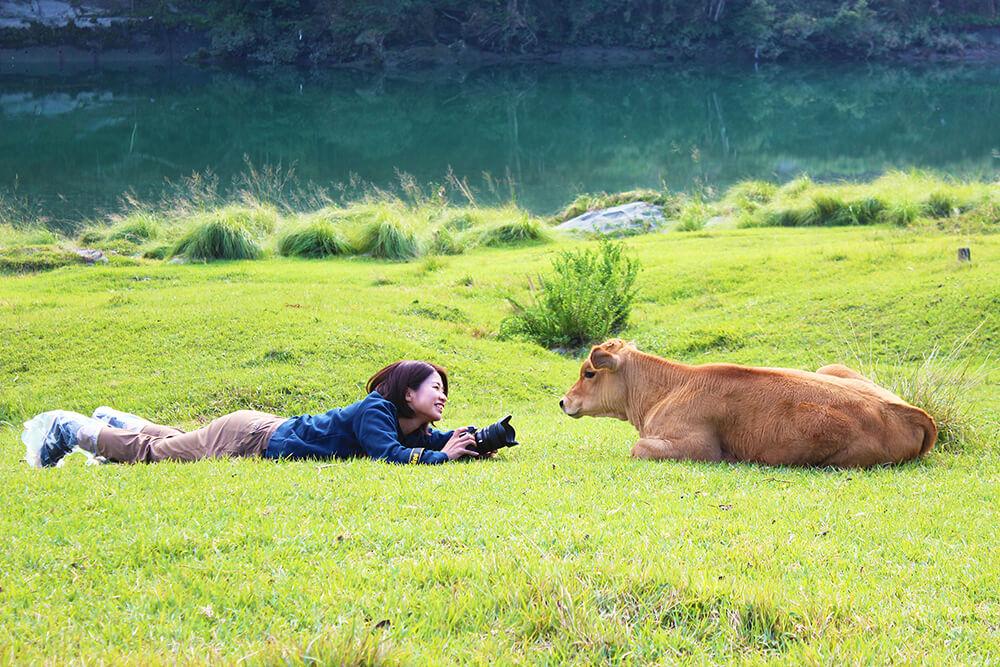 家畜写真家のお仕事